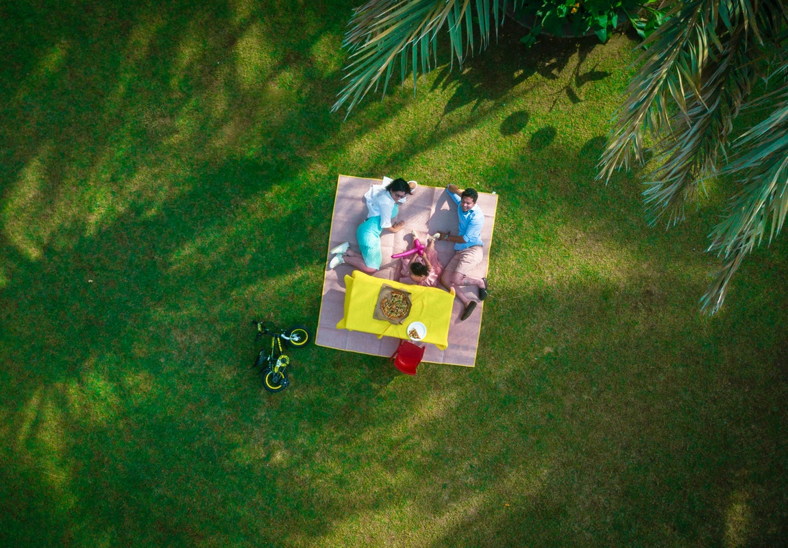 Lawn Picnic Family