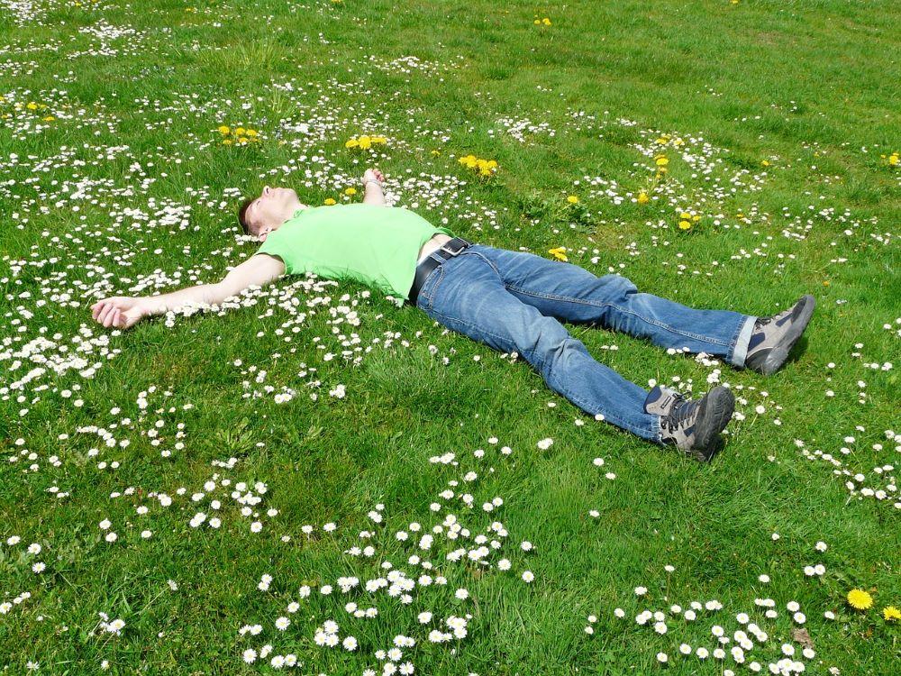 Grass Guy Asleep