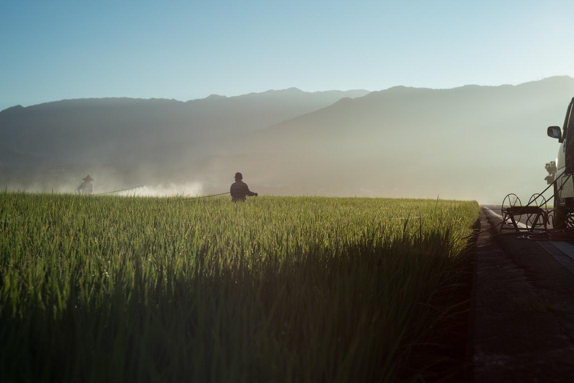 Field Fumigation